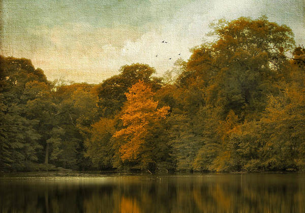 Bronze Leaf Wall Art - Photograph - Reflecting October by Jessica Jenney