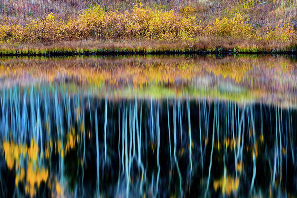 Photograph - Reflecting On Fall by John De Bord