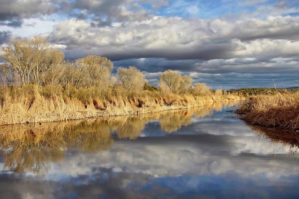 Photograph - Reflections Of Serenity by Leda Robertson