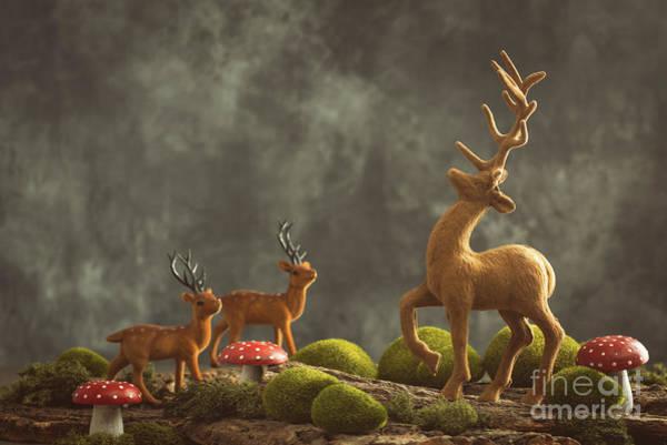 Wall Art - Photograph - Reindeer Scene by Amanda Elwell