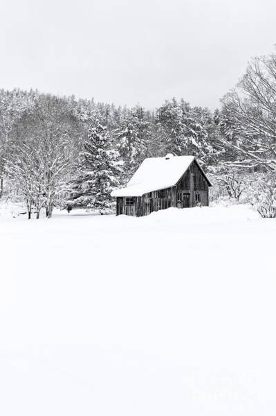 New England Barn Photograph - Remote Cabin In Winter by Edward Fielding