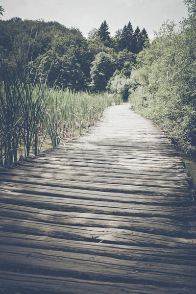 Photograph - Retro Hiking Path by Brandon Bourdages