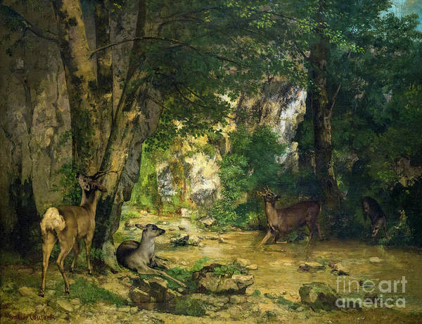 Remise Photograph - Return Of The Deer To The Stream At Plaisir Fontaine, La Remise  by Peter Barritt