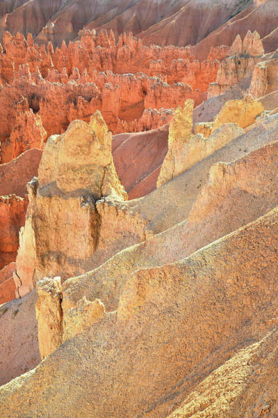 Photograph - Rim Trail Hoodoos by Ray Mathis