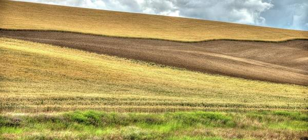 Photograph - Ripening Wheat Cloudy Sky Two by Jerry Sodorff