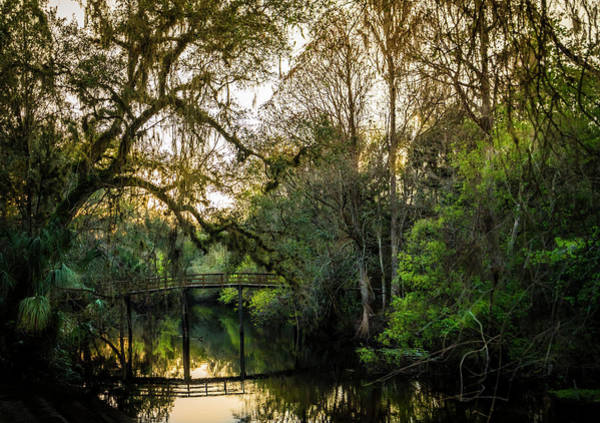Wall Art - Photograph - River Bridge by Marvin Spates