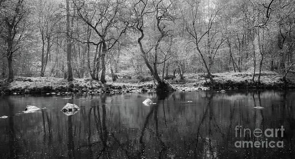 Photograph - River Wharfe by Mariusz Talarek