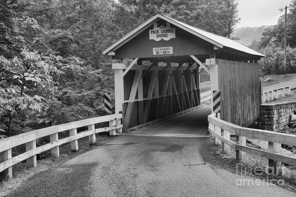 Somerset County Photograph - Road To The Packsaddle Covered Bridge by Adam Jewell
