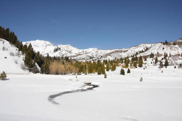 Photograph - Rocky Mountain Winter by Mark Smith