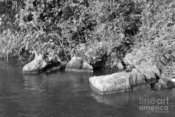 Photograph - Rocky Shoreline by Todd Blanchard