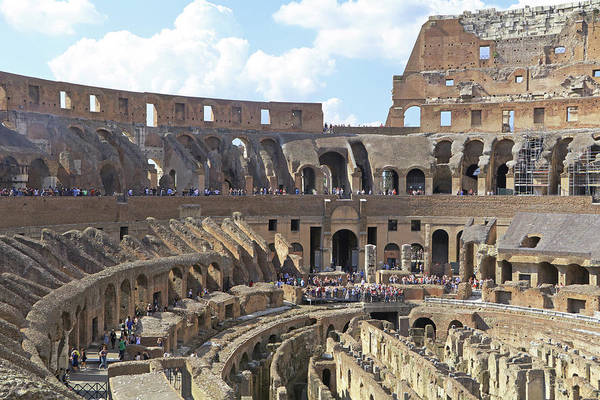 Photograph - Roman Colosseum by Tony Murtagh