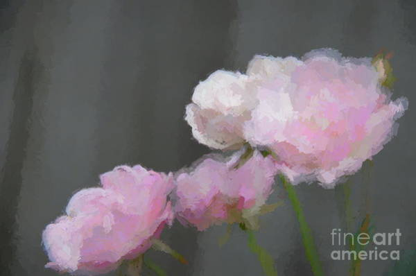 Mixed Media - Roses - Bring On Spring Series by Andrea Anderegg