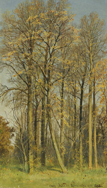 Painting - Rowan Trees In Autumn by Ivan Shishkin