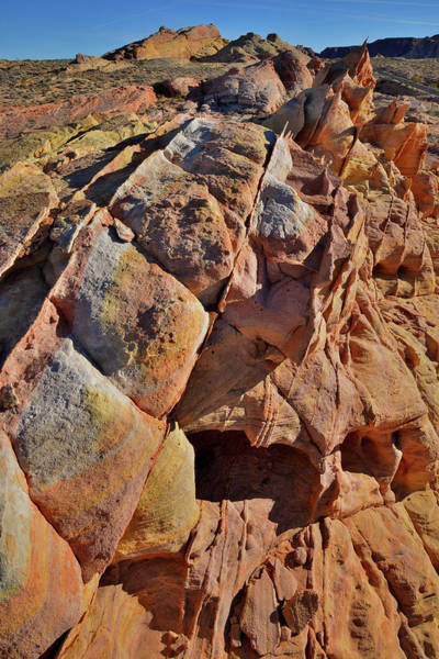 Photograph - Rows Of Color In Valley Of Fire by Ray Mathis