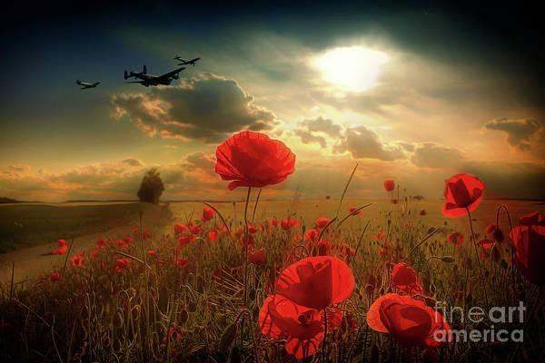 Tribute Digital Art - Royal Air Force Tribute by J Biggadike