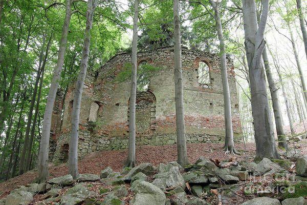 Woodland Wall Art - Photograph - Ruins Of The Baroque Chapel Of St. Mary Magdalene by Michal Boubin