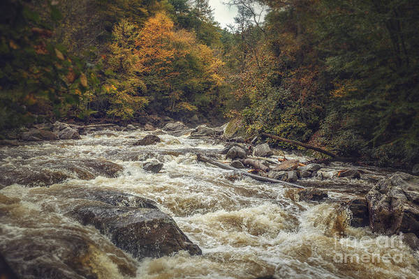 Photograph - Rushing Water by Tim Wemple