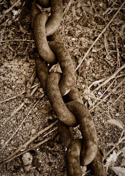 Photograph - Rusted Chain by Nathan Little