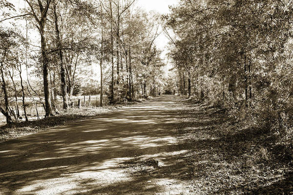 Photograph - Sabine River Near Big Sandy Texas Photograph Fine Art Print 4105 by M K Miller