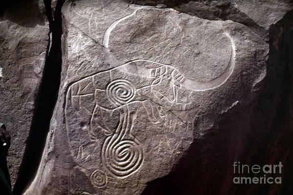 Photograph - Saharan Rock Painting by Granger