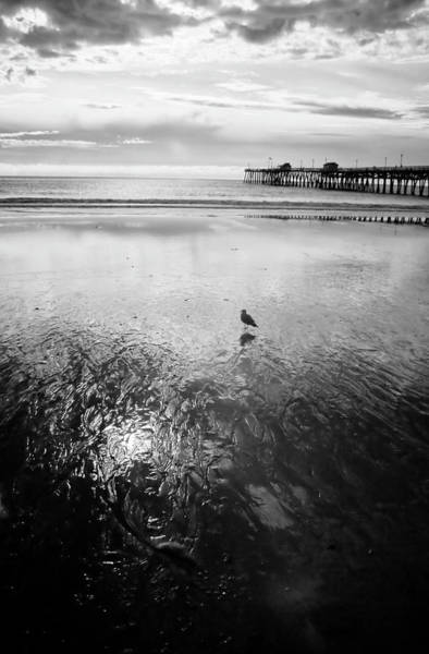 Black And White Wall Art - Photograph - San Clemente Pier by G Wigler