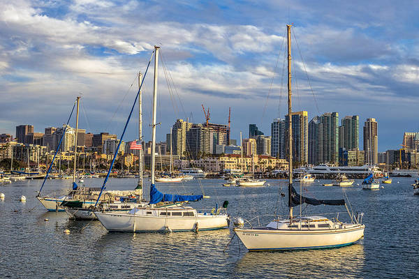 Photograph - San Diego Harbor by Peter Tellone