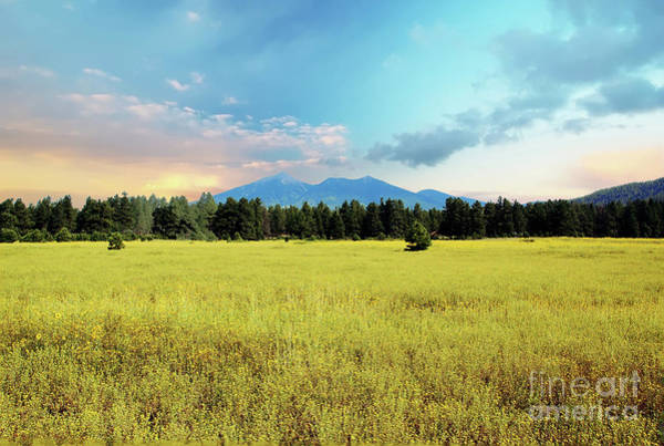 Wall Art - Photograph - San Francisco Peaks Sunrise by Kelly Wade