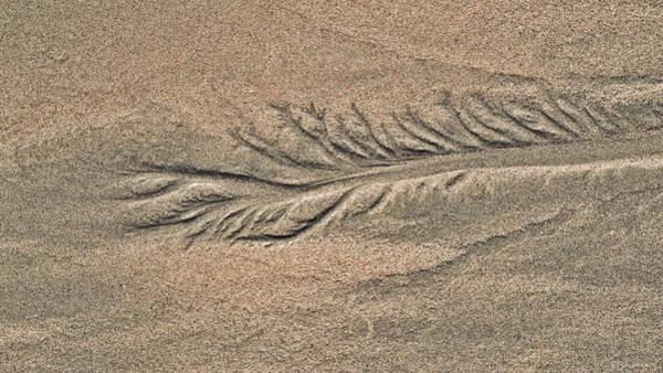 Photograph - Sand Patterns On The Beach 2 by Steven Ralser