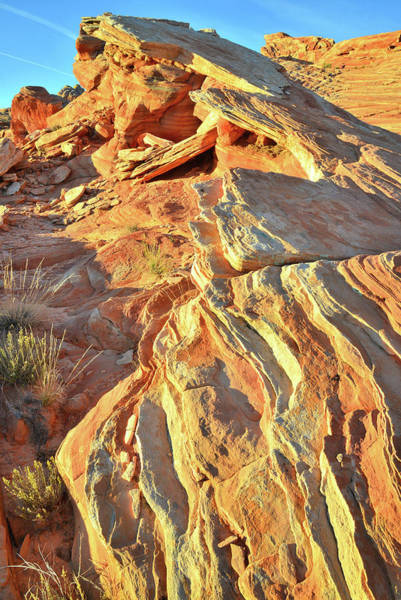 Photograph - Sandstone Ripples In Valley Of Fire by Ray Mathis