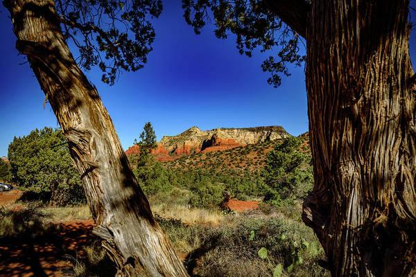Wall Art - Photograph - Schnebly Hill Road 4 - Sedona Arizona by Jon Berghoff