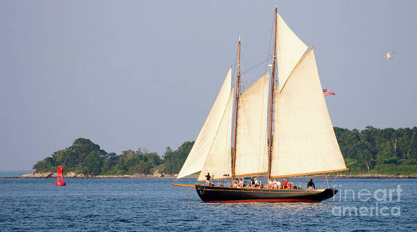 Photograph - Schooner Cruise, Casco Bay, South Portland, Maine  -86696 by John Bald