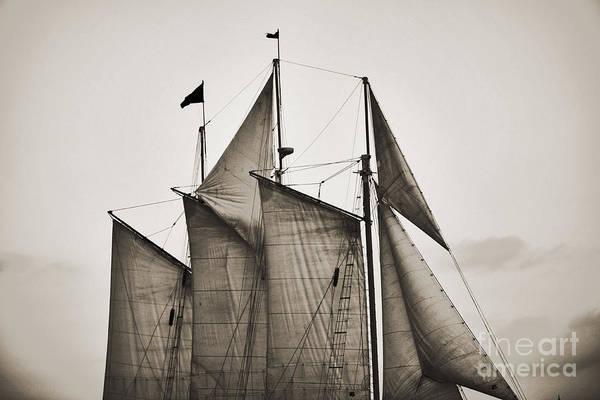 Wall Art - Photograph - Schooner Pride Tall Ship Charleston Sc by Dustin K Ryan