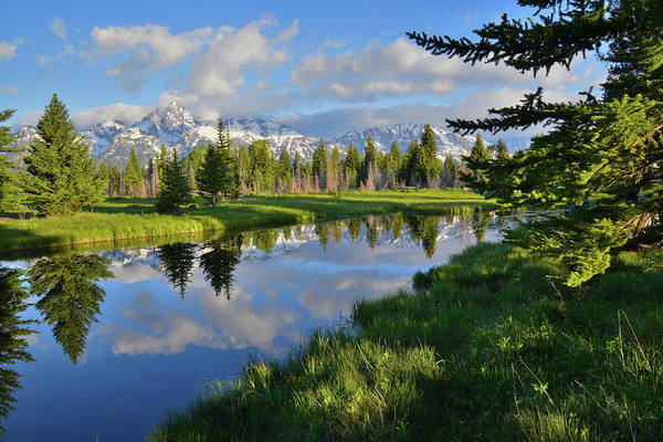 Photograph - Schwabacher Landing Morning by Ray Mathis