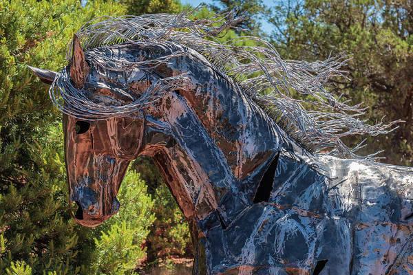 Wall Art - Photograph - Sculptured Horse - Sedona by Jon Berghoff