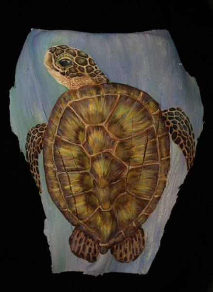 Painting - Sea Turtle by Nancy Lauby