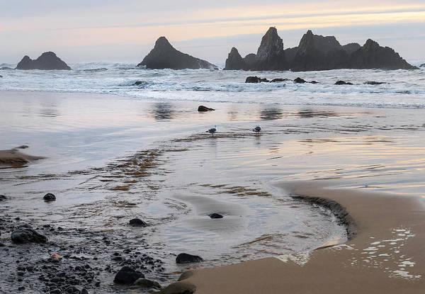 Neiman Photograph - Seal Rock 0169 by Bob Neiman