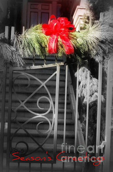 Photograph - Season's Greetings by Donna Bentley