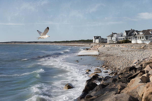 Photograph - Seaview by Robin-Lee Vieira