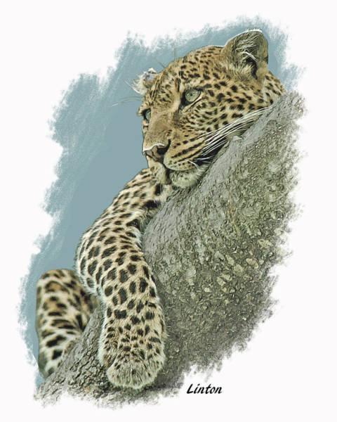 Digital Art - Serengeti Leopard by Larry Linton