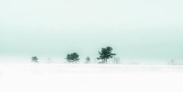 Photograph - Serenity by Donna Lee