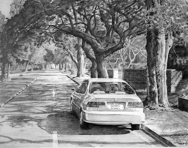 Drawing - Shaded Boulevard by Christopher Reid