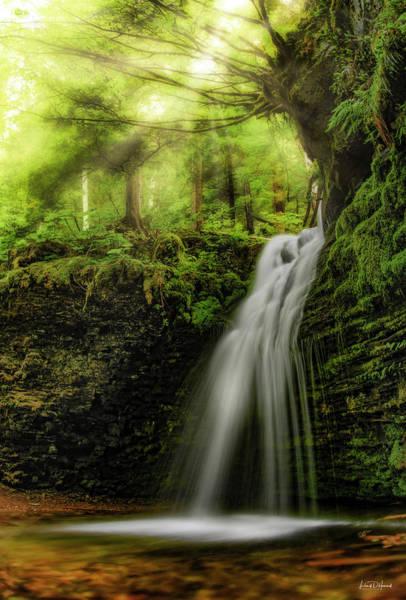 Wall Art - Photograph - Shadow Falls by Leland D Howard