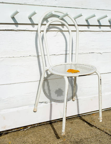 Photograph - Shadows Of Suspended White Chair And Autumn Leaf by Gary Slawsky