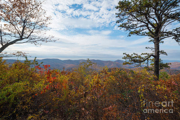 Pinnacles Photograph - Shenandoah National Park In Autumn by Michael Ver Sprill