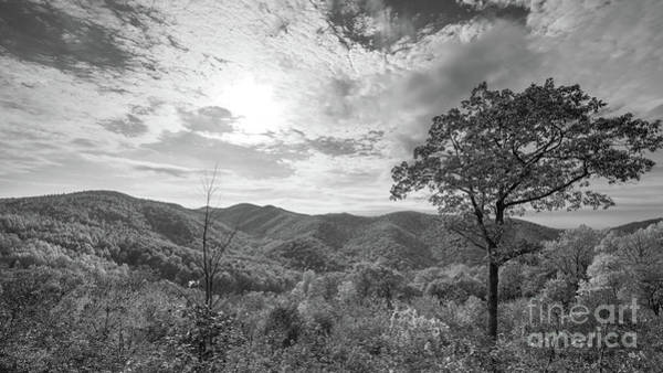 Shenandoah Wall Art - Photograph - Shenandoah Overlook In Autumn by Michael Ver Sprill
