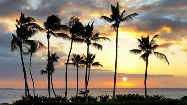 Photograph - Silhouetted Sunset Waikoloa by Pamela Walton