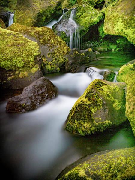 Photograph - Silky Smooth Water-aquascape. by Usha Peddamatham