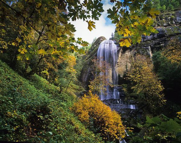 Photograph - Silver Falls by Robert Potts