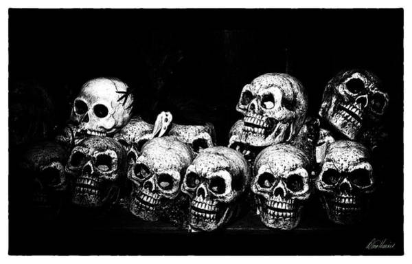 Photograph - Skulls by Diana Haronis