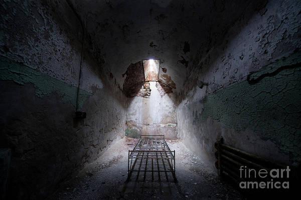 Wall Art - Photograph - Sleep Tight by Michael Ver Sprill